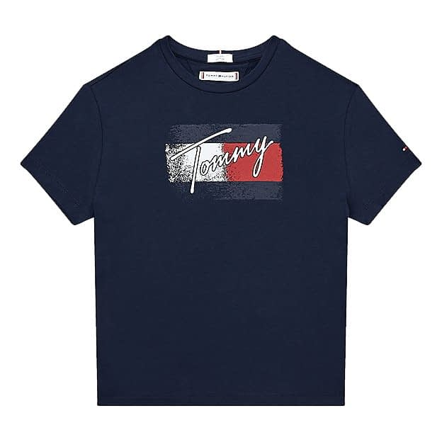 Tommy Hilfiger Flag Print T-Shirt Blauw KG0KG05909-C87 front main