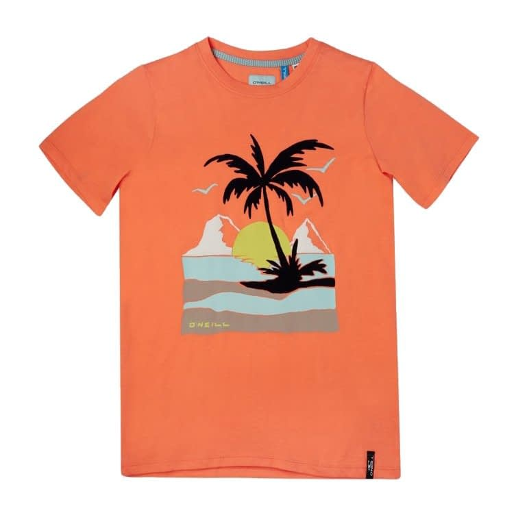 O'Neill Palm Shotsleeve T-Shirt Living Coral 1A2478-2513 main
