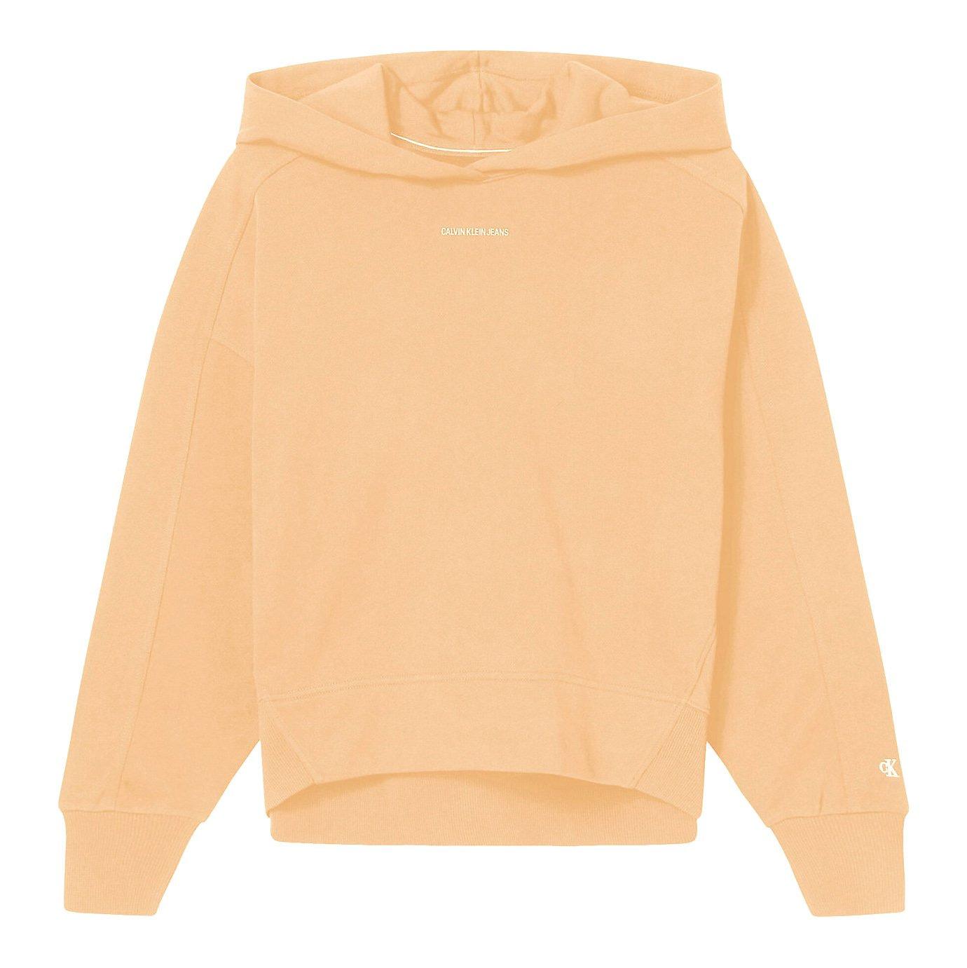 Calvin Klein Micro Brand Hoodie Oranje J20J215462-SFX main